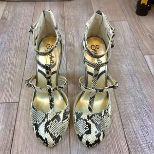 Seychelles Special Edition T-strap Heels. Size 8