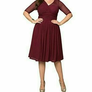 Kiyonna Modern Mesh Dress Cranberry Crush