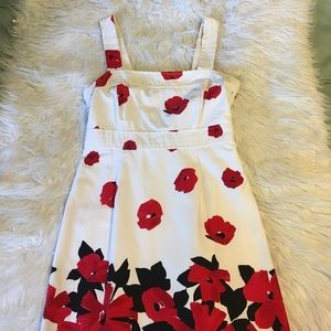 Dressbarn poppy print dress