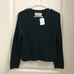 🔥NWT🔥 aliciaPAGEBOY Japan Green Crop Sweater