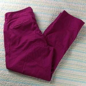 Ann Taylor LOFT 10  Wine Cropped Ankle Zip Pants