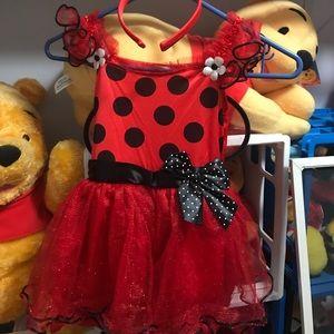 Other - Toddler girl ladybug Halloween costume