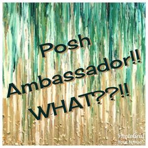 I'm a Posh Ambassador!! Happy Poshing!! 💝💝💝