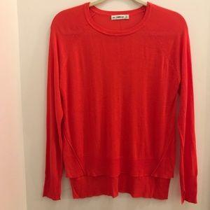SUPER Soft Zara Sheer Knit Sweater  (size small)