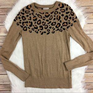 Cheetah top sweater