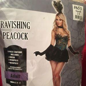 Halloween Costume - Ravishing Peacock