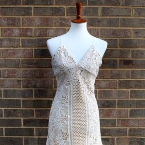 NWT | Romeo and Juliet | Ivory Nude Lace Dress- S