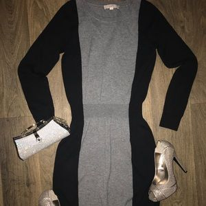 Ann Taylor Loft Long Sleeve Sweater Dress 👗-
