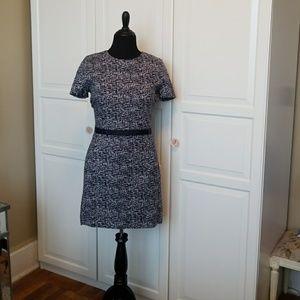 Gap Blue and White mod dress.