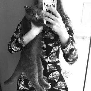 😻 cat dress Modcloth frock shop small sweater