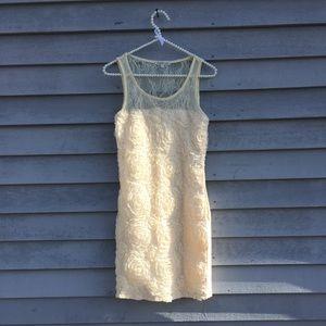 3D Rose Lace Body Con Cream Dress