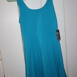 NWT Express Blue Skater Dress