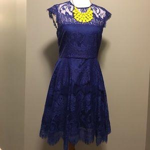 B.B. Dakota blue lace dress 6
