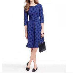 Boden Blue w/ Velvet Polka Dot Dress