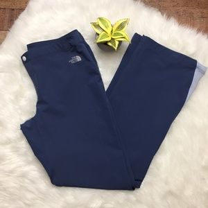 The North Face Blue Winter Pants