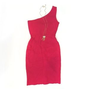 BCBG Max Azria Body-Con Dress