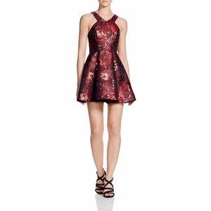 NWT Rose Print Brocade  Fit & Flare Dress Sz S