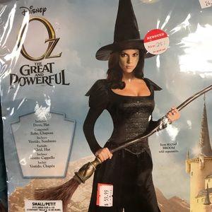 Halloween Wizard of Oz Witch