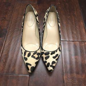 Leopard print Calvin Klein heels Nadine