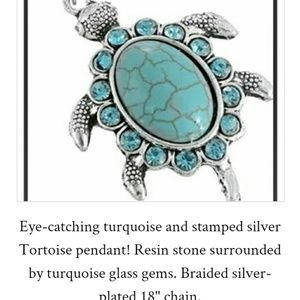 Silver and turquoise Turtle necklace