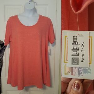 Coral perfect t