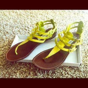 Steve Madden size 9 sandal