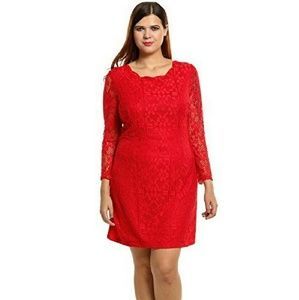 Red Lace Dress size 20