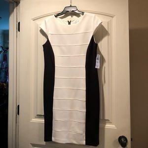 Studio One Off White and Black Dress