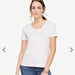 Ann Taylor Scoop neck white tee