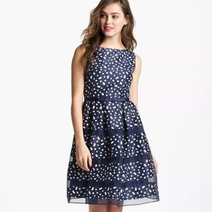 NWT Taylor Polka Dot Taffeta Fit and Flare Dress