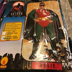 Other - Robin costume