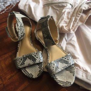 Rachel Zoe Snake Sandals