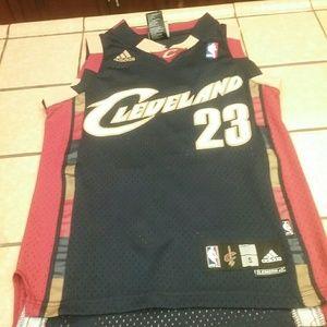 LeBron James Cavaliers jersey