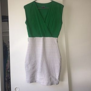 Knee length, form fitting express dress