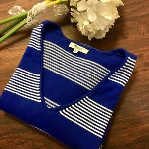 Madewell Adorable V Neck Blue White Stripe Sweater