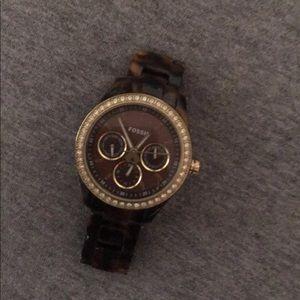 Tortoise fossil watch