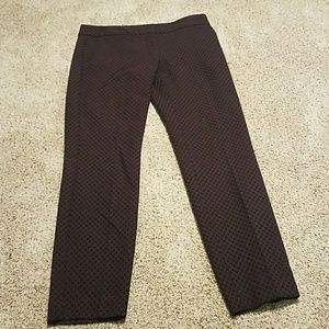 Express columnist dress pants 2R