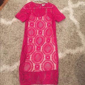 Magenta lace shirt sleeve dress ASOS sz 4