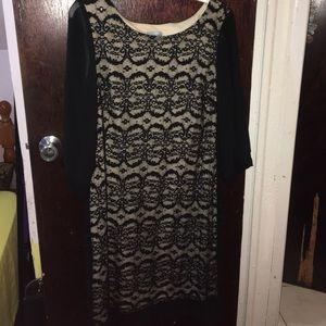 Plus size ladies black lace dress