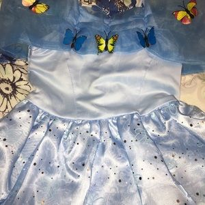 Other - Enchanted Cinderella butterfly costume dress