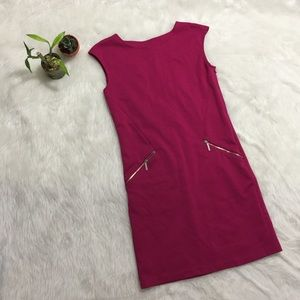 NWOT Michael Kors Pink Career Dress