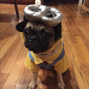 Dog Minion Costume