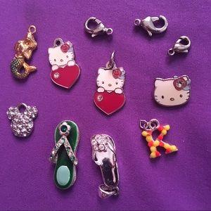 Lot of Necklace Pendants & Bracelet Charms