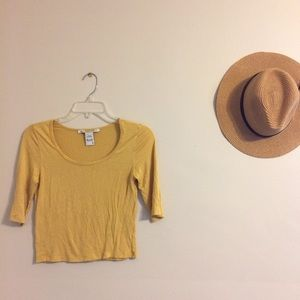 Soft Mustard Yellow Crop