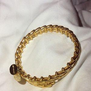 Alex & Ani Gypsy wrap bracelet