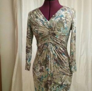 CAbi Ruched Dress
