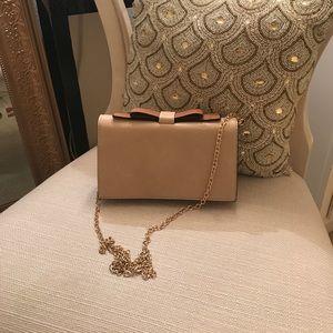 Francesca's clutch purse!