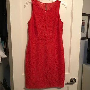 J. Crew Lace Sheath Dress