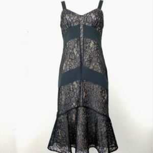 ANN TAYLOR LOFT Black Lace Nude Trumpet Dress 8p