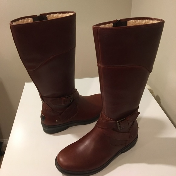 d75e1a9580a New Classic Ugg Evanna brown leather tall boots ❤️ NWT